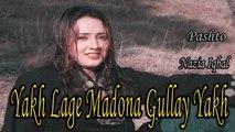 Javed Fiza, Nazia Iqbal - Yakh Lage Madona Gullay Yakh