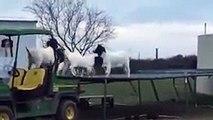 Buzz : Des chèvres s'amusent sur un trampoline ( Goats Jumping on a Trampoline ) !