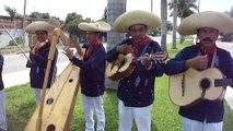 Los Marineros de Tepalcatepec... Un Desengano