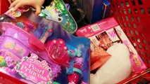 Toy Hunt Frozen Disney Princess Doll Barbie Elsa Store Shopping Surprise Backpacks AllToyC