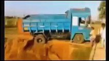 Car crash| car crash compilation | car crash videos | worst car accidents videos part 16