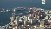 #Gibraltar Barbary Macaques / Les singes - Gibraltar webTV