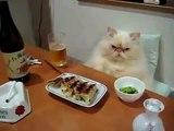 Ужин настоящего гурмана