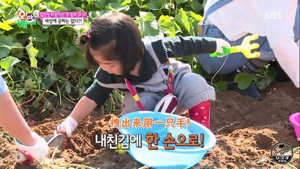 Oh My Baby 20151107 Ep87 Part 2