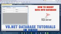 P(4) VB.NET Database Tutorials In Urdu - How to insert data into database