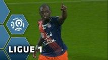 But Jérôme ROUSSILLON (24ème) / Montpellier Hérault SC - FC Nantes (2-1) -  (MHSC - FCN) / 2015-16