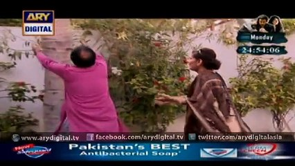 BulBulay - Episode 372 - November 8, 2015