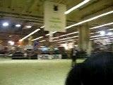 Salon du cheval 2006 (7)