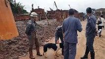 Bombeiros utilizam cães farejadores em buscas em Bento Rodrigues