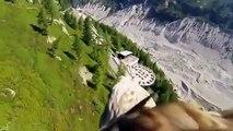 Aigle UAV. Aigle vole avec une caméra vidéo
