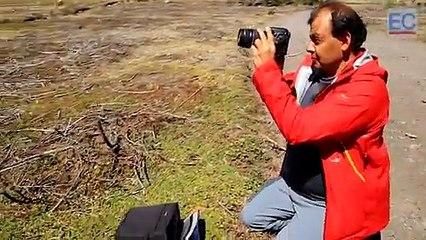 Cómo cambiaron los glaciares del volcán Cotopaxi