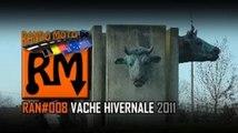 RAN#008 VACHE HIVERNALE 2011