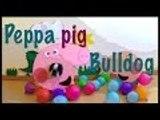 Peppa pig bulldog. El vlog de mi perro, bulldog francés, French bulldog