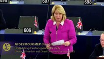 UKIP: Jill Seymour MEP EU Rules On Remotely Piloted Aircraft Systems