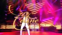Céline Dion en concert à l'AccorHotels Arena de Paris, les 24 et 25 juin 2016