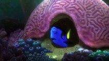 Le Monde de Dory : première bande annonce pour la suite de Nemo