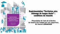 """Expérimentation """"Territoires zéro chômage de longue durée"""" : les conditions de réussite - cese"""