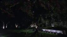 Scream Queens 1x08 Sneak Peek #1 Season1 Episode 8