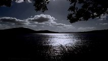 MEDITATION RELAXATION-Tranquil Sounds of Nature at Night-Calming Lapping Water-Soothing Wi