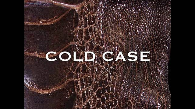 vistlip - COLD CASE - 1.COLD CASE