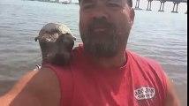 Teknesine Atlayan Sevimli Fok İle Arkadaş Olan Adam
