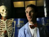 Bill Nye The Science Guy S02E03 - Blood and Circulation