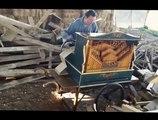 Smooth Criminal repris avec un orgue de barbarie!! En mode Michael Jackson