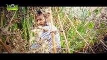 Latest Telugu Short Films 2015