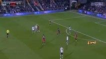 Fulham vs Queens Park Rangers (QPR) 4 0 Ben Pringle Goal 2015