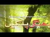 Bheegi Palkein Episode 2 Promo on Aplus