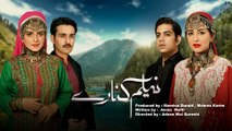Neelum Kinarey (HUM SITARAY) - Full AUDIO OST - Zeb Bangash