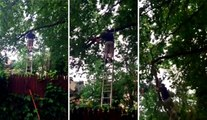 Leaning Your Ladder Against The Limb You're Cutting Is a Bad Idea