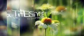 Stylish Glass Slideshow - After Effects Project Files | VideoHive 13393220