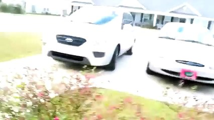 Njegov vlasnik se konačno vratio kući. Reakcija psa je čak i njega iznenadila!
