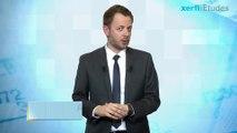 Xerfi France, Les énergies hydrauliques et marines