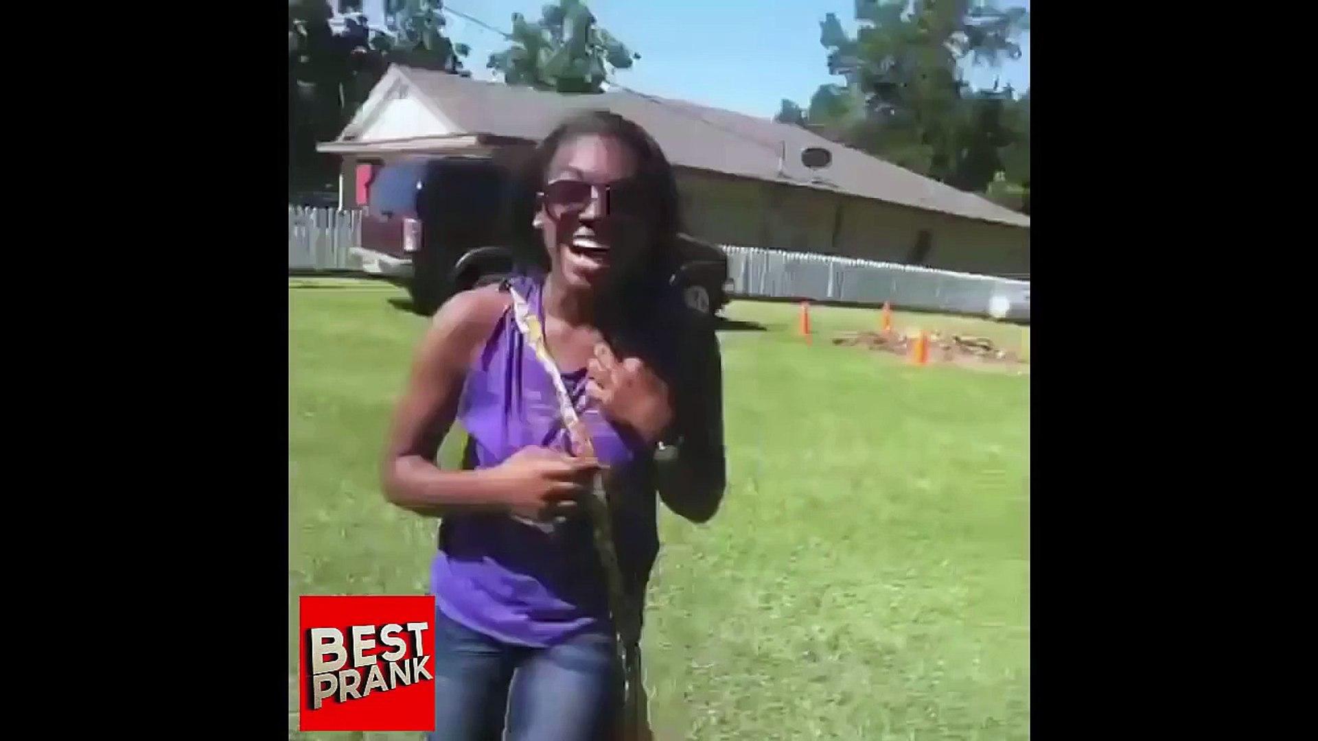 Funny Pranks - Spider Pranks - Funny Videos - Funny Pranks Compilation