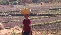 Projet d'Amitié France Madagascar : les vitrines agricoles dans 9 villages