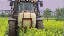 Permaculture-Faut-il réinventer les pratiques agricoles ?-Xenius_Arte_2015_11_17_08_25