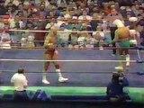 Ric Flair vs Lex Luger- Starrcade 1988