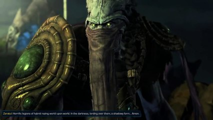 Starcraft 2 : Legacy of the void  Cut scene : artanis and zeratul Before amon corrupt Kalah