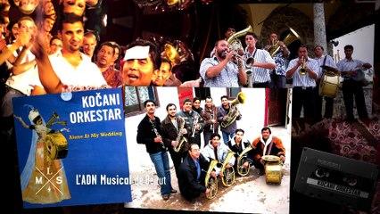 L'ADN musical - Beirut