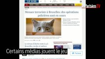 Menace terroriste en Belgique : des photos de chats pour aider la police