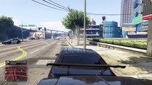 Grand Theft Auto V Shawns