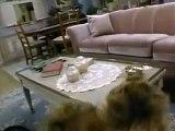 Alf - Générique Série TV