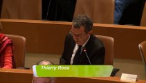 Interpellation de Thierry Roos conseil municipal Strasbourg 20 novembre 2015