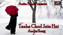 Superhit Hindi Songs-''Tanha Chod jate Hai''-Full Audio Song    Heart Touching Love Songs    Latest Hindi Songs    New Romantic Song 2015