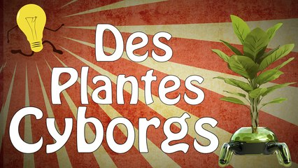 Des plantes cyborgs
