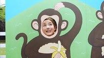 石原さとみ、顔出し看板でキュートなサルに!? PIXUS TV CM「PIXUS サル!撮る!年賀状!ピッ!篇」