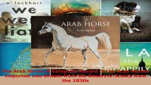 Read  The Arab Horse A Complete Record of the Arab Horses Imported into Britain from the Desert Ebook Online