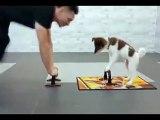 Workout like this....with Dog--Like & Share